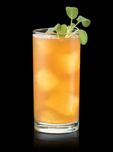 Mm_apricotsagebourboncocktail2